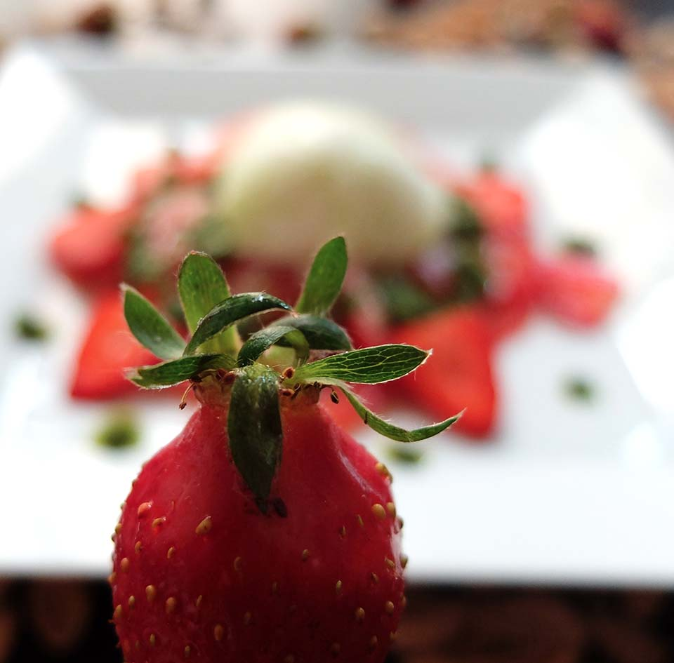 tomate fraise burrata