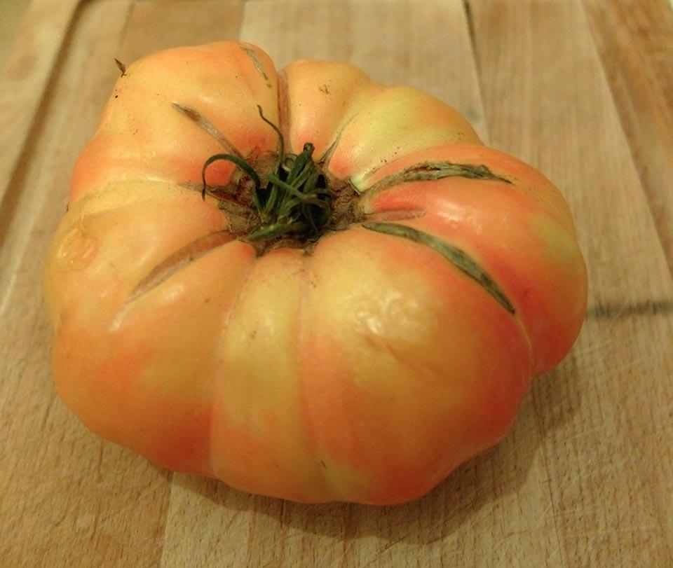 burger tomate